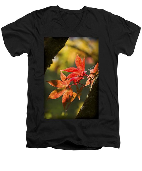 Men's V-Neck T-Shirt featuring the photograph In Between... by Clare Bambers