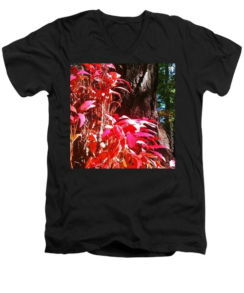 In The Shelter Of Your Arms Men's V-Neck T-Shirt
