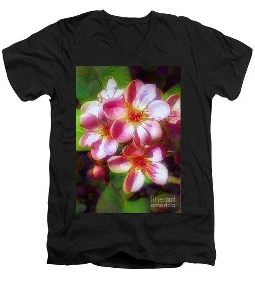 India Hawthorne Men's V-Neck T-Shirt