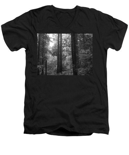 Into The Wood Men's V-Neck T-Shirt
