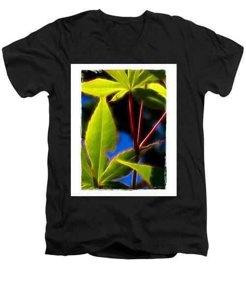 Japanese Maple Leaves Men's V-Neck T-Shirt by Judi Bagwell