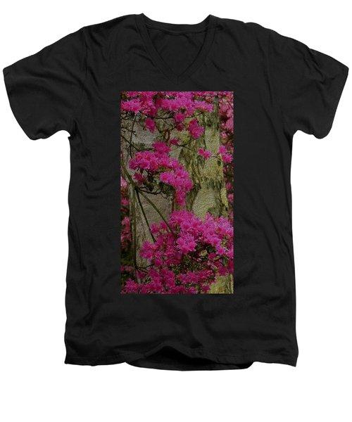 Japanese Painting Men's V-Neck T-Shirt