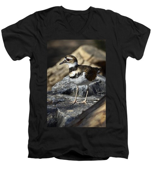 Killdeer Men's V-Neck T-Shirt by Saija  Lehtonen