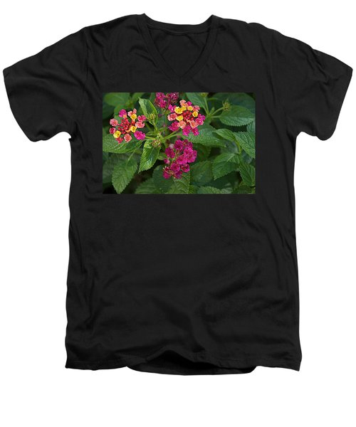 Men's V-Neck T-Shirt featuring the photograph Lantana by Joseph Yarbrough