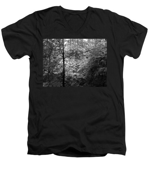Light In The Woods Men's V-Neck T-Shirt