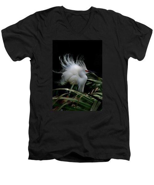 Little Snowy Men's V-Neck T-Shirt