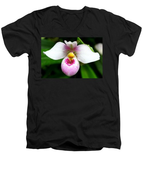 Little White And Pink Orchid Men's V-Neck T-Shirt