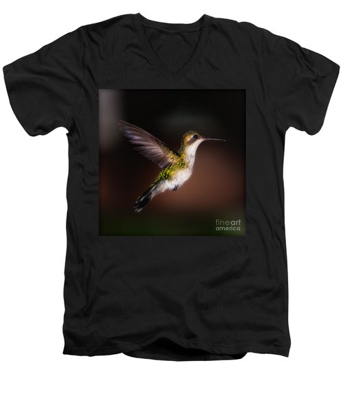 Lone Hummingbird Men's V-Neck T-Shirt