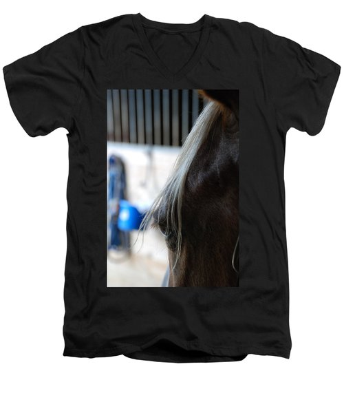Men's V-Neck T-Shirt featuring the photograph Looking Forward by Jennifer Ancker