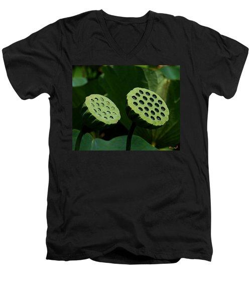 Lotus Capsules-sun Worshipers Dl052 Men's V-Neck T-Shirt