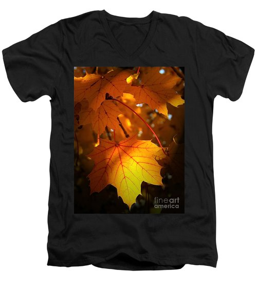 Maple At First Light Men's V-Neck T-Shirt by Sue Stefanowicz