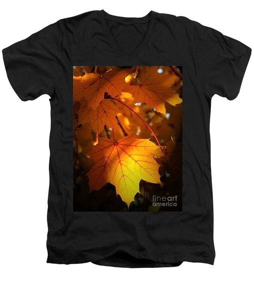 Maple At First Light Men's V-Neck T-Shirt