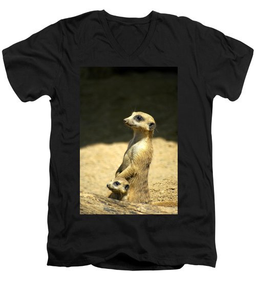 Meerkat Mother And Baby Men's V-Neck T-Shirt