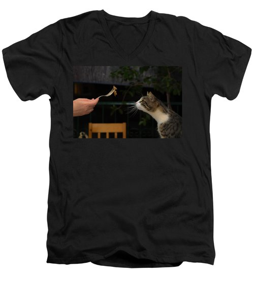 My Best Most Beloved Cat Men's V-Neck T-Shirt