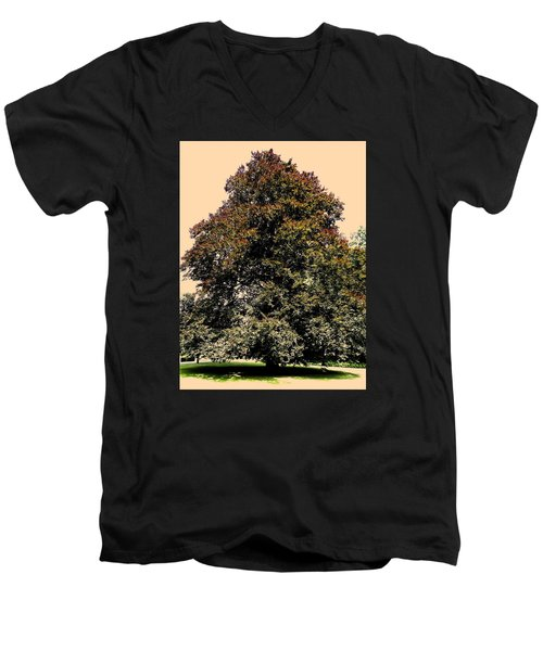 Men's V-Neck T-Shirt featuring the photograph My Friend The Tree by Juergen Weiss