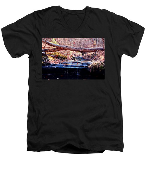 Men's V-Neck T-Shirt featuring the photograph Natural Spring Beauty  by Peggy Franz