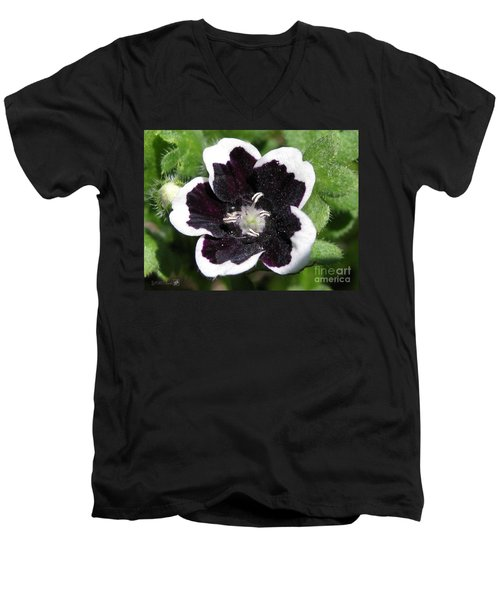 Men's V-Neck T-Shirt featuring the photograph Nemophilia Named Penny Black by J McCombie