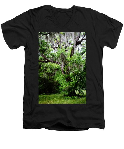 Oak And Moss Men's V-Neck T-Shirt