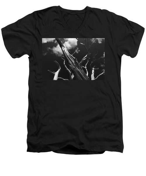 Men's V-Neck T-Shirt featuring the photograph Old Tree by David Gleeson