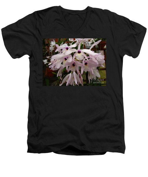 Men's V-Neck T-Shirt featuring the photograph Orchids Beauty by Donna Brown