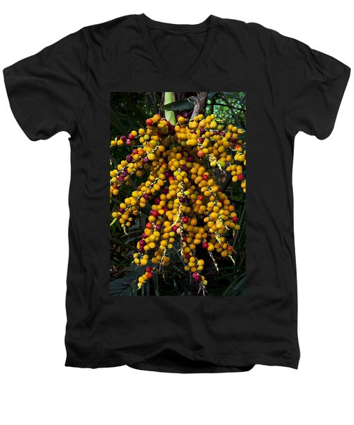 Men's V-Neck T-Shirt featuring the photograph Palm Seeds Baroque by Steven Sparks