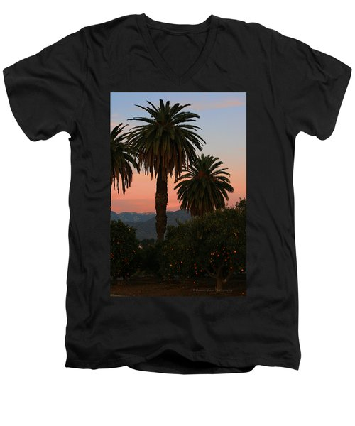 Palm Trees And Orange Trees Men's V-Neck T-Shirt by Dorothy Cunningham
