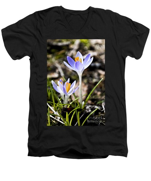 Peaking Spring Men's V-Neck T-Shirt