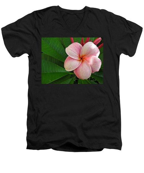 Pink Plumeria Men's V-Neck T-Shirt