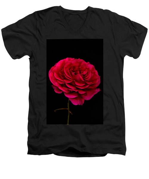 Men's V-Neck T-Shirt featuring the photograph Pink Rose by Steve Purnell