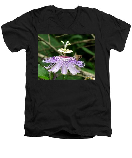 Men's V-Neck T-Shirt featuring the photograph Plenty For All by Donna Brown