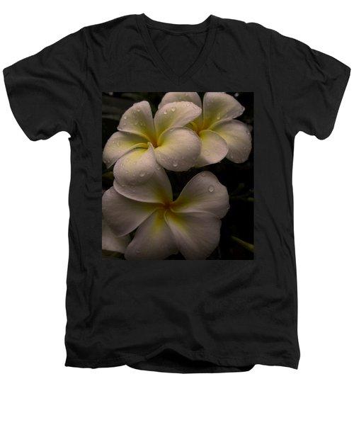 Plumeria Men's V-Neck T-Shirt by Dorothy Cunningham