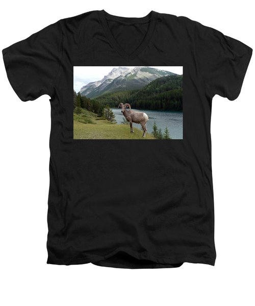 Men's V-Neck T-Shirt featuring the photograph Portrait Of A Bighorn Sheep At Lake Minnewanka  by Laurel Best