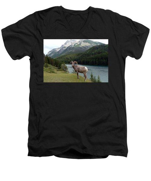 Portrait Of A Bighorn Sheep At Lake Minnewanka  Men's V-Neck T-Shirt by Laurel Best