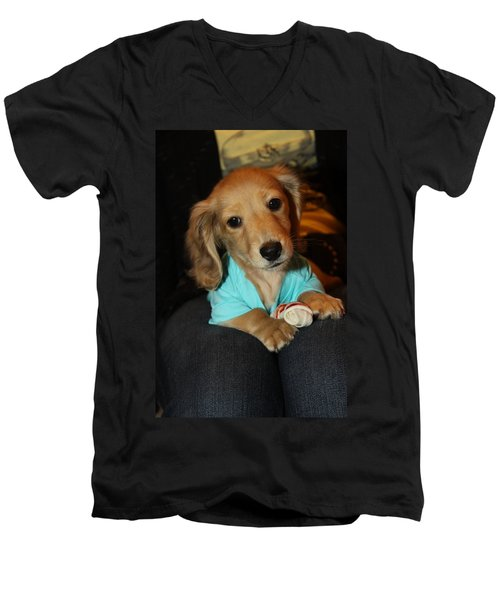 Precious Puppy Men's V-Neck T-Shirt