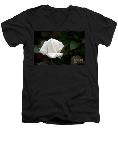 Men's V-Neck T-Shirt featuring the photograph Pure As Snow by Living Color Photography Lorraine Lynch
