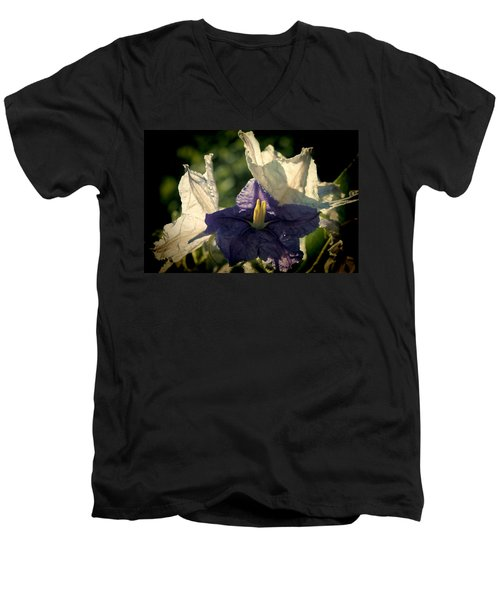 Men's V-Neck T-Shirt featuring the photograph Radiance by Steven Sparks