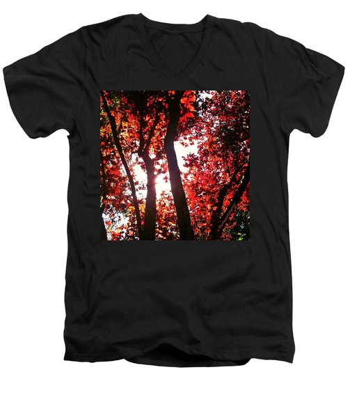 Reaching For Glory - Afternoon Light Men's V-Neck T-Shirt