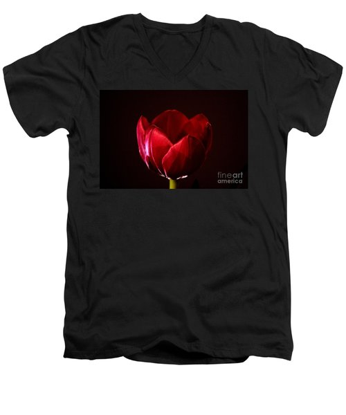 Red Tulip Men's V-Neck T-Shirt