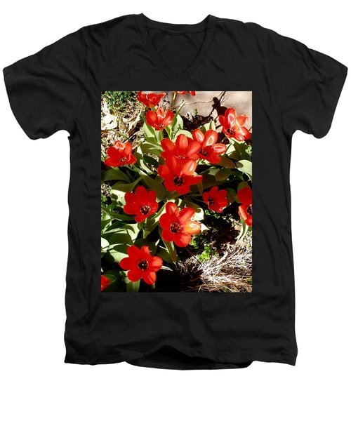 Men's V-Neck T-Shirt featuring the photograph Red Tulips by David Pantuso