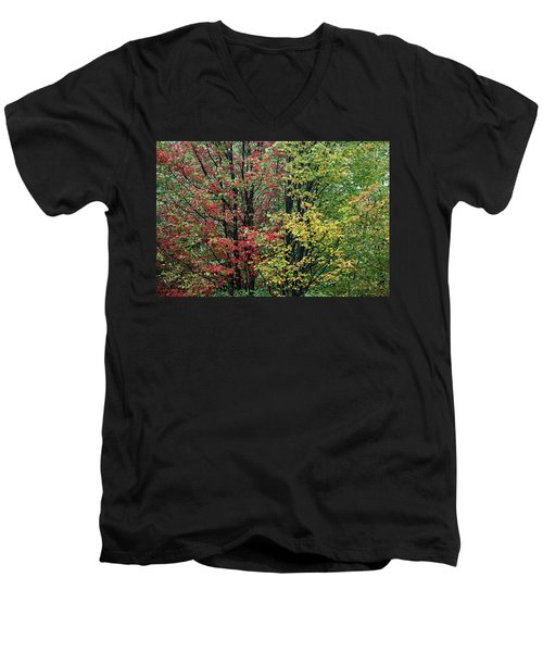 Red Yellow And Green Leaves Men's V-Neck T-Shirt