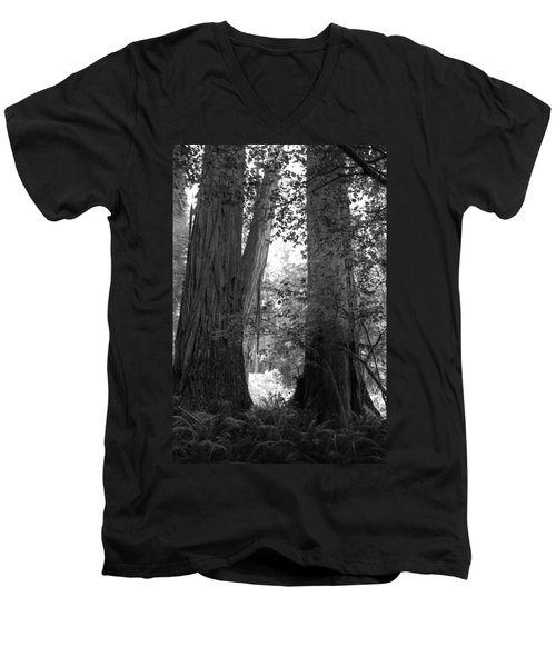Redwood Pair Men's V-Neck T-Shirt