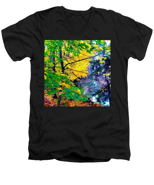 Reed College Canyon Fall Leaves II Men's V-Neck T-Shirt by Anna Porter