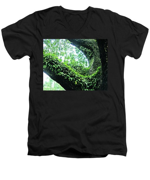 Men's V-Neck T-Shirt featuring the photograph Resurrection Fern by Lizi Beard-Ward