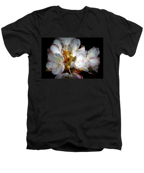 Rhododendron Explosion Men's V-Neck T-Shirt