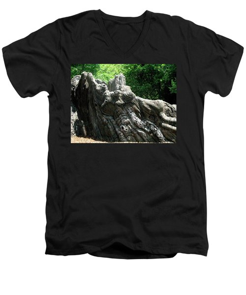 Men's V-Neck T-Shirt featuring the photograph Rock Formation 2 by Maria Urso