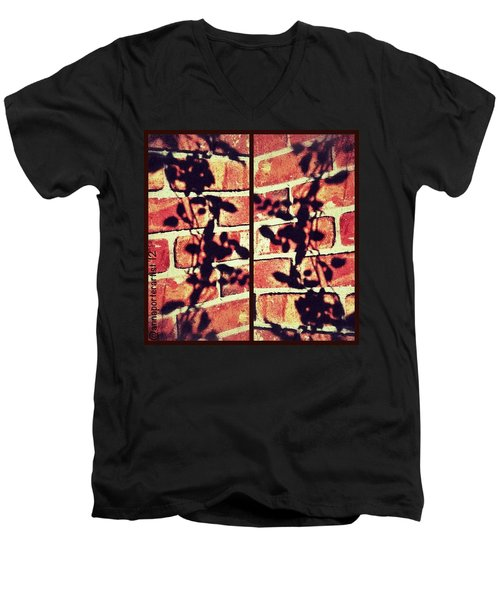 Rose Leaves - Shadow On Brick Men's V-Neck T-Shirt