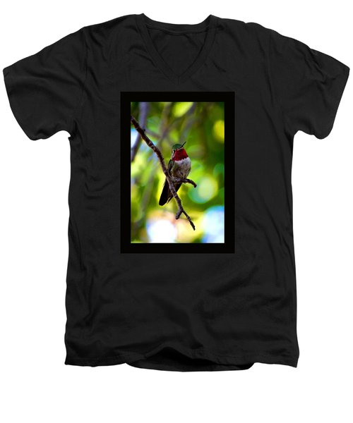 Ruby Throated Hummingbird Men's V-Neck T-Shirt by Susanne Still
