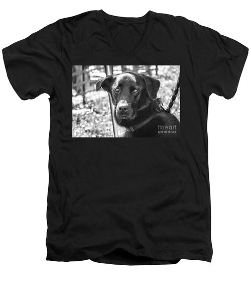 Men's V-Neck T-Shirt featuring the photograph Sad Eyes by Eunice Gibb