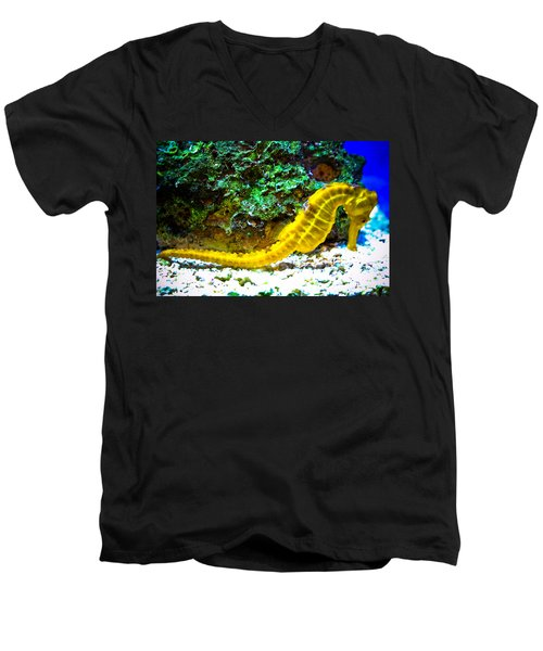 Yellow Seahorse Men's V-Neck T-Shirt by Toni Hopper