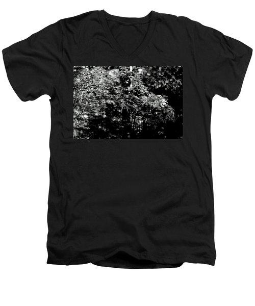 Serene Men's V-Neck T-Shirt by Jeanette C Landstrom